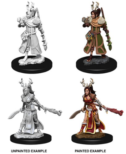 Female Human Druid: D&D Nolzur's Marvelous Miniatures